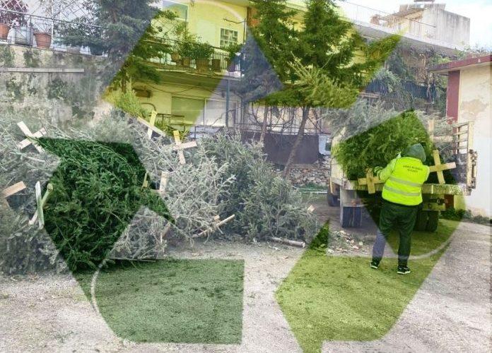 Δήμος Φιλοθέης – Ψυχικού: Ξεκίνησε η ανακύκλωση των χριστουγεννιάτικων δέντρων