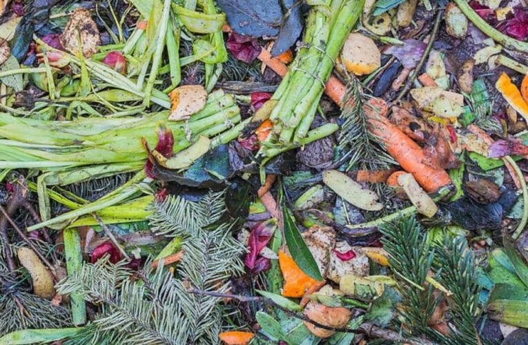 Διεθνής Ημέρα για την Απώλεια και τη Σπατάλη Φαγητού, η 29η Σεπτεμβρίου – Τί «Μπορούμε» να κάνουμε