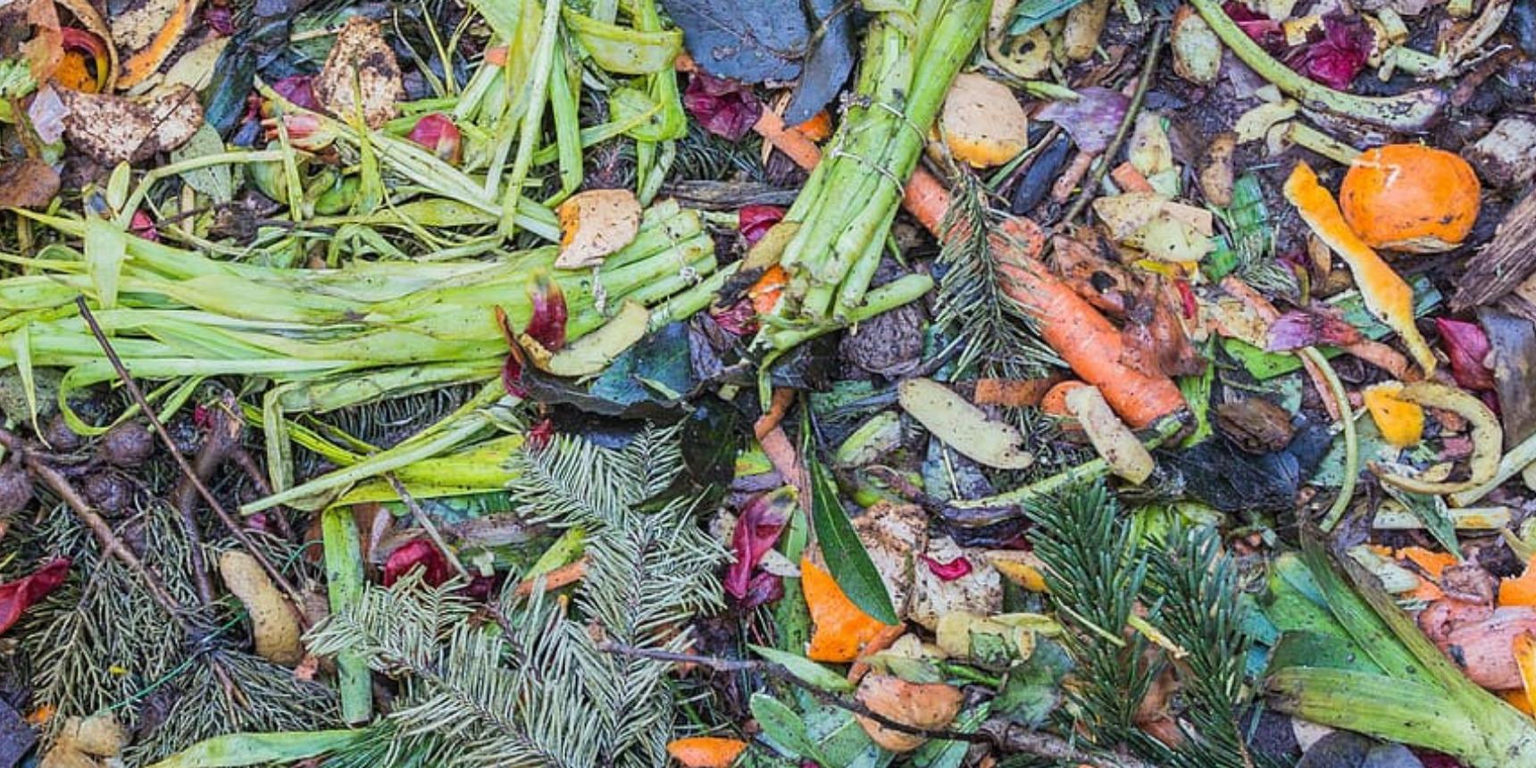 Διεθνής Ημέρα για την Απώλεια και τη Σπατάλη Φαγητού, η 29η Σεπτεμβρίου - Τί «Μπορούμε» να κάνουμε