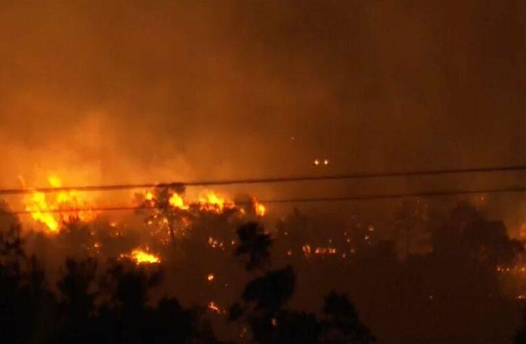 Φωτιά στη Νέα Μάκρη: «Eμπρησμός 100%» δήλωσε ο δήμαρχος Μαραθώνα