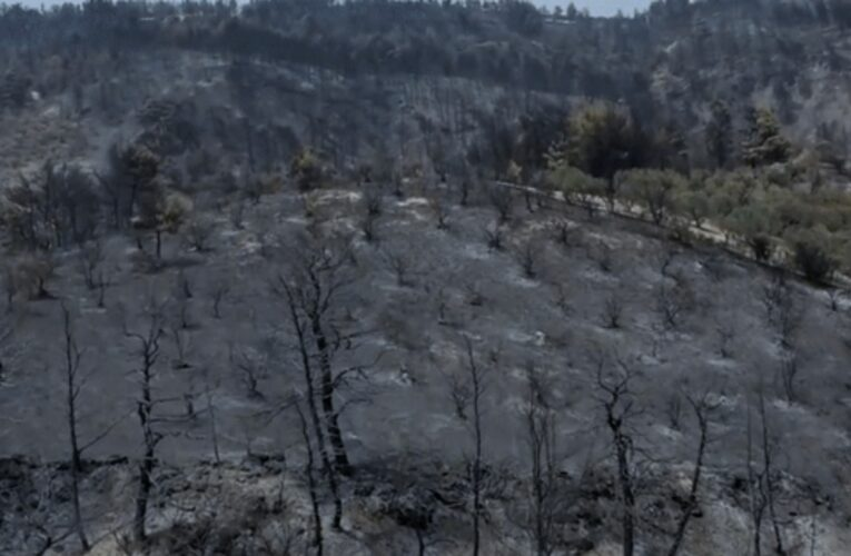 Εύβοια: Kίνδυνος ερήμωσης ολόκληρων χωριών μετά τις καταστροφικές πυρκαγιές